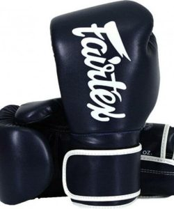 Fairtex BGV14 Boxing Gloves Blue