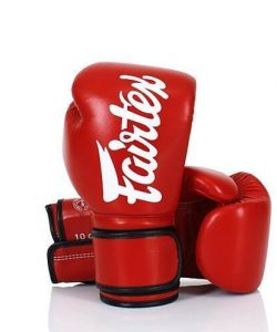 Fairtex BGV14 Boxing Gloves Red