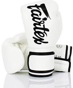 Fairtex BGV14 Boxing Gloves White