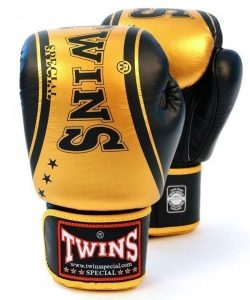 Twins FBGV-TW4 Boxing Gloves