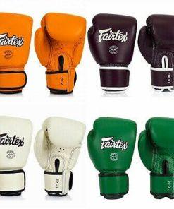 Fairtex BGV16 Boxing Gloves