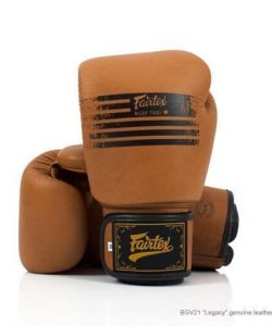 Fairtex Legacy Boxing Gloves BGV21