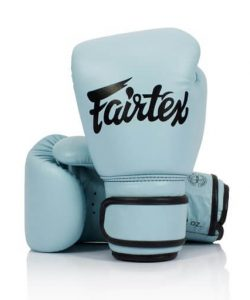 Fairtex BGV20 Genuine Leather Boxing Gloves