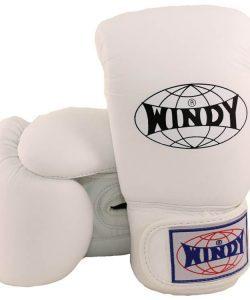 WIndy Muay Thai Gloves White