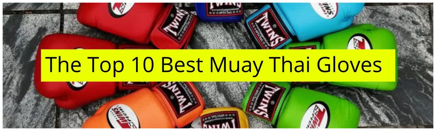 the top 10 Best Muay Thai Gloves.