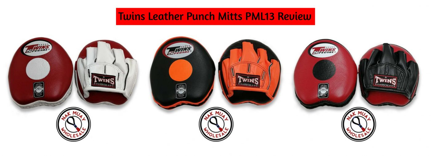 Twins Leather Punch Mitts PML13 review