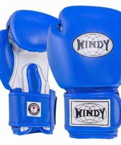 Windy Kids Boxing Gloves